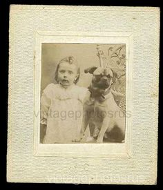 Cute girl pug dog c1890 Cabinet card penny 1 by VintagePhotosRus, $18.00