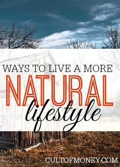 Living a more natural lifestyle is not only good for you and the environment but it can save you a lot of money. Here are six things you can do to get started. make money from home, make extra money #makemoney money ideas, money principles, #money
