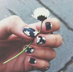 White daisies on black nail polish