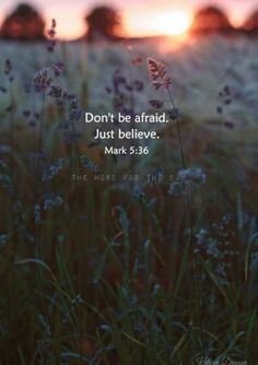 30 Trendy Ideas for nature quotes christian bible verses Bible Verses Quotes, Jesus Quotes, Bible Scriptures, Daily Bible Verses, Peace Bible Quotes, Beautiful Bible Quotes, Jesus Tumblr, Nature Quotes, Religious Quotes