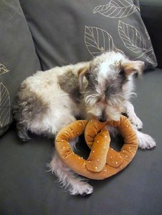 NYC Pretzel Dog Toy w/ Squeaker by LittleBarkster on Etsy, $13.00 I want to get this for my baby!