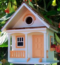 Bird House with peach colored trim!