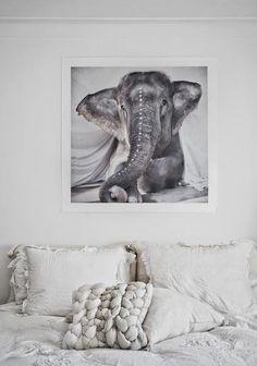 Love Warriors - Elephant - Adele print - norsu interiors - 2
