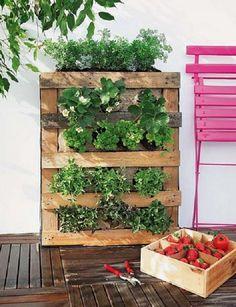 Una parete di aromatiche in balcone http://www.cosedicasa.com/una ...