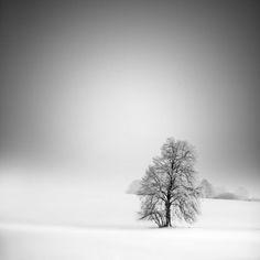 Lovenordic Design Blog: Snowy....