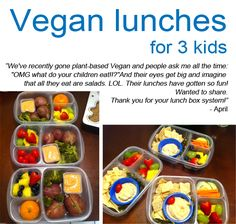 Plant based lunches packed in #easylunchboxes Please like http://www.facebook.com/RagDollMagazine and follow @RagDollMagBlog @priscillacita