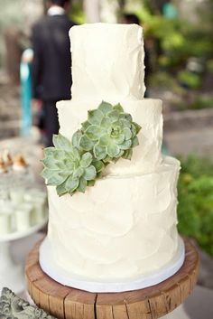 Succulent wedding cake (maybe little succulents around the bottom tier instead of on the cake)