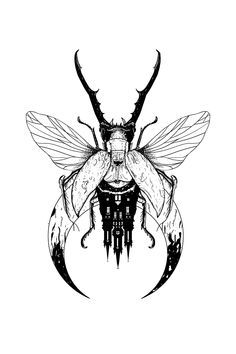 Piece out of my apprentice portfolio Beetle Tattoo, Bug Tattoo, Insect Tattoo, Skull Rose Tattoos, Black Tattoos, Body Art Tattoos, Tattoo Drawings, Dark Art Tattoo, Tattoo Flash Art