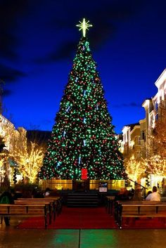 Christmas at Green Valley Ranch, Henderson, Nevada-love going here.