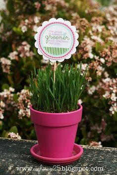Teacher Appreciation Plant would be fun to have at lunch for table display and gift to take home