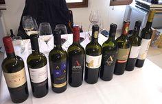 Alpha Estate's vineyard consists of the following varieties: Xinomavro, Mavrodapnhe, Syrah, Merlot, Pinot Noir, Tannat, Montepulciano, Negro Amaro, Barbera, Malagouzia, Sauvigon Blanc, Chardonnay & Gewürztraminer.