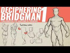 DECIPHERING BRIDGMAN'S ANATOMY 1 - YouTube Good Tutorials, Anatomy Drawing, Art Tips, Figure Drawing, Books Online, Videos, Youtube, 2d, Animation