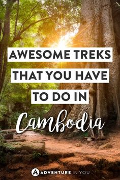 Looking for the best trekking in Cambodia? Here is our list of best trekking routes to take on! With an incredibly diverse landscape, Cambodia is… See other ideas and pictures from the category menu…. Faneks healthy and active life ideas