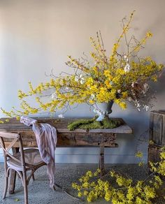 Forsythia are in full bloom here in NY! In our little town, forsythia line many of the houses I pass everyday. It always feels like spring… Faux Flowers, Fresh Flowers, Yellow Flowers, Beautiful Flowers, Flower Power, Silk And Willow, Décor Antique, Flower Installation, Ivy House