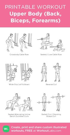 Upper Body (Back, Biceps, Forearms): my visual workout created at WorkoutLabs.c… – Fitness&Health&Gym For Women Bodyweight Upper Body Workout, Back And Bicep Workout, Forearm Workout, Biceps Workout, Upper Body Weight Workout, Bicep Workout Women, Upper Body Workout For Women, Chest And Tricep Workout, Shoulder Workout Women
