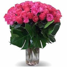 Flowers have a language of their own and with FlowersCakesOnline.com you can easily send flowers to India. To make for a great gift which will surely be loved by all, buy flower vase online and send them to India using the service of free shipping in India.