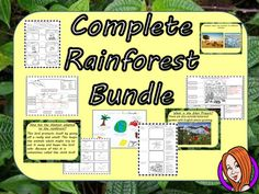 All My Rainforest Lessons in One Big Bundle! This download includes 11 of my complete lessons on the rainforest. There are detailed PowerPoints for each lesson with differentiated activities and engaging starters to explain several elements of the rainforest, including climate change, animal adaptions, physical locations and more.