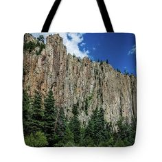 Palisades Sill - Cimarron Canyon State Park - New Mexico Tote Bag featuring the photograph Palisades Sill - Cimarron Canyon State Park - New Mexico by Debra Martz