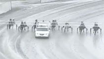 Video: Horse Race Pace Car Crashes Into Horses - A Funny Video on KillSomeTime