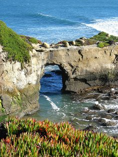 Natural Bridges State Beach, Santa Cruz, California...spring break where are you?