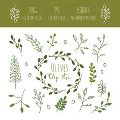 Olive Branches Clip Art EPS and Bonus by weheartpaperdesigns