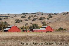California Farm - Morgan Hills