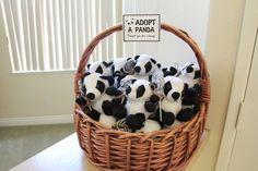 """""""Adopt a Panda"""" Stat"""