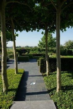 Tuin in de kijker: Landschapsfragmenten