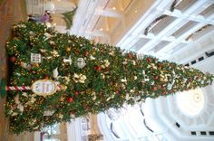 40 foot tree is erected in the lobby of the Grand Floridan with more than 45,000 lights.