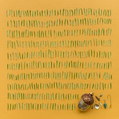 Artist and photographer Emily Blincoe creates meticulously arranged collections of objects for her work. http://coolthingoftheday.tumblr.com/post/121292018261/photoset_iframe/coolthingoftheday/tumblr_npspciW5yV1u38l26/500/false
