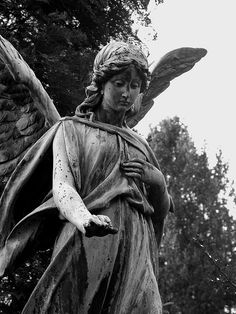 Friedhof Ohlsdorf Hamburg by christianstobbe, via Flickr