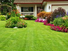 Combining expert maintenance with dramatic beds can make your yard stand out among the rest on your street