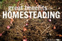 Great Benefits of Homesteading | The Elliott Homestead