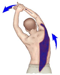 Lattisimus Dorsi Stretch The coloured part is being stretched. and spine in straight line. the right upper limb over head. towards left with left hand as shown Neck Stretches, Back Exercises, Latissimus Dorsi, Muscle Pain Relief, Trigger Points, Muscle Mass, Rib Cage, Chiropractic, Karate