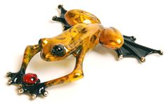 """""""Lucky Bug"""" by the frogman Tim Cotterill"""