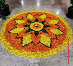 50 Most Beautiful Flower Rangoli Designs (ideas) that you can make during any occasion on the living room or courtyard floors. Rangoli Designs Simple Diwali, Rangoli Designs Flower, Rangoli Ideas, Rangoli Designs Images, Flower Rangoli, Simple Rangoli, Flower Designs, Diwali Decorations At Home, Flower Decorations