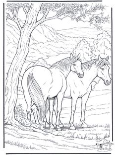 Free Coloring Pages for Adults | Animals coloring pages / Horses / Free coloring pages horse