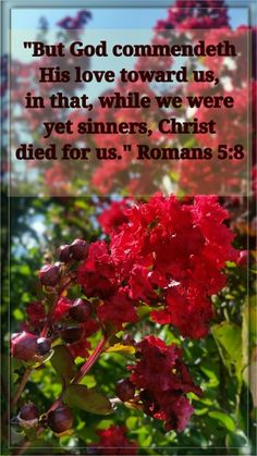 Romans 5:8 - BIBLE VERSES EACH DAY (fb)