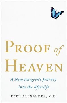 Proof of Heaven book review