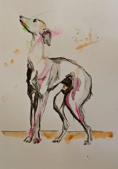 Dogs in Art at the StockBridge Gallery - Italian Greyhound by Kim McRae, £195.00 (http://www.dogsinart.com/products/Italian-Greyhound-by-Kim-McRae.html/)
