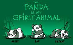 The Panda Is My Spirit Animal - Koala Funny - Funny Koala meme - - The Panda Is My Spirit Animal The post The Panda Is My Spirit Animal appeared first on Gag Dad. Panda Love, Cute Panda, Panda Panda, Panda Wallpapers, Cute Wallpapers, Cute Animal Quotes, Cute Animals, Funny Animals, Cute Animal Drawings