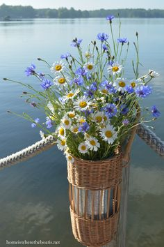 Basket of Ox-eye Daisy and Bachelor Buttons on dock | homeiswheretheboatis.net