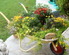 Wheelbarrow planter- must use my accidental auction purchase. Container Plants, Container Gardening, Wheelbarrow Planter, Pot Jardin, Garden Planters, Outdoor Projects, Flower Beds, Yard Art, Amazing Gardens