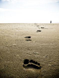(13) Old footsteps trod