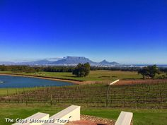 A view of Table Mountain from the patio of  De Grendel Wine Estate