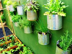 Container gardening is only limited by your imagination.  Many items can be recycled and used to reflect your personal style. ~ Easy Edible Landscapes Miami