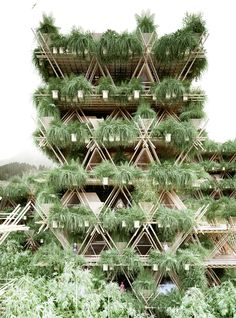 Chinese architecture and design collective Penda reckons bamboo should be a more widespread construction material than it currently is. To promote this view, the firm recently produced the Rising Canes Pavilion for this year's Beijing Design Week. Architecture Durable, Bamboo Architecture, Futuristic Architecture, Sustainable Architecture, Contemporary Architecture, Bamboo Building, Green Building, Building Plans, Cabinet D Architecture