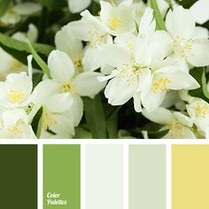 Color Palette #3391