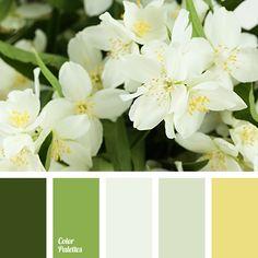 Color Palette #3391