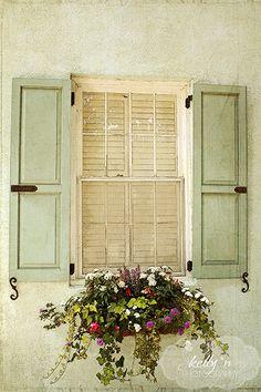 Vintage Window Box- From Charleston, SC- Lovely soft green shutters, and… Green Shutters, Window Shutters, Outdoor Shutters, Exterior Shutters, Diy Shutters, Window Box Flowers, Flower Boxes, Fake Flowers, Iron Windows